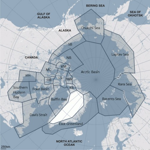 Figure 2. The 19 polar bear subpopulation boundaries around the Arctic that polar bear biologists use for their studies. Courtesy IUCN Polar Bear Specialist Group (with some labels added).