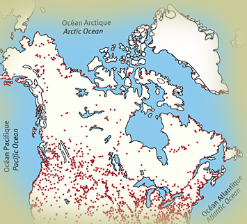 How long have polar bears lived in Hudson Bay polarbearscience