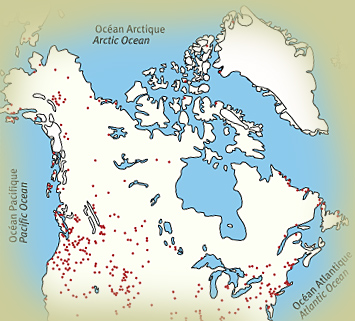 How Long Have Polar Bears Lived In Hudson Bay Polarbearscience - Hudson bay on world map