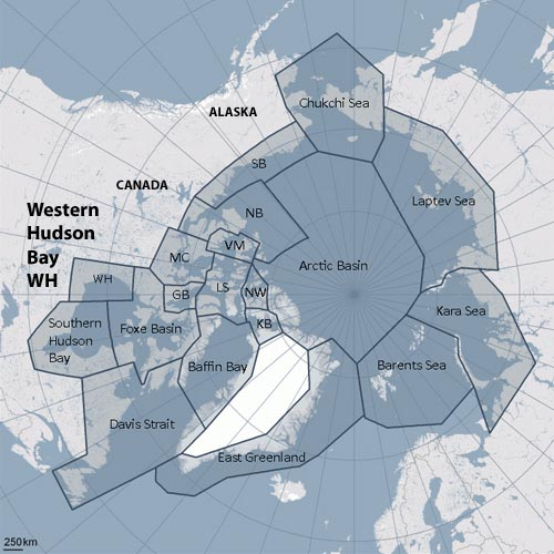 Figure 1. Polar bear subpopulations defined by the Polar Bear Specialist Group (PBSG). Note that Baffin Bay, Davis Strait, Western Hudson Bay and Southern Hudson Bay are all similar in that they become ice-free by early fall (the September minimum) or before.