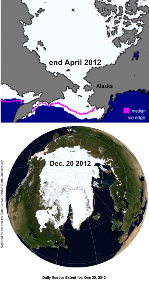 Figure 3. At the end of April 2012, St. Matthew Island was still well surrounded by ice and did not clear the area until at least the end of May. The ice did not return to this region until mid-to-late December 2012. Ice conditions were somewhat more severe than this in 1875, when Elliott saw bears spending the summer on St. Matthew: then, the ice did not retreat until late June (about a month later than 2012) and was perhaps back again by late November. Modified maps from NSIDC. Click to enlarge.