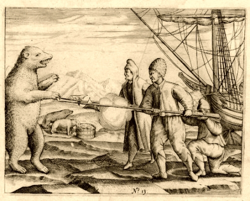 Figure 2. An engraving from De Veer's journal conveys the struggle the crew faced in warding off polar bears during their winter stay at Novaya Zemlya. The bears not only stalked and attacked the crew - they got into the food stores on the ship (From Wikipedia).