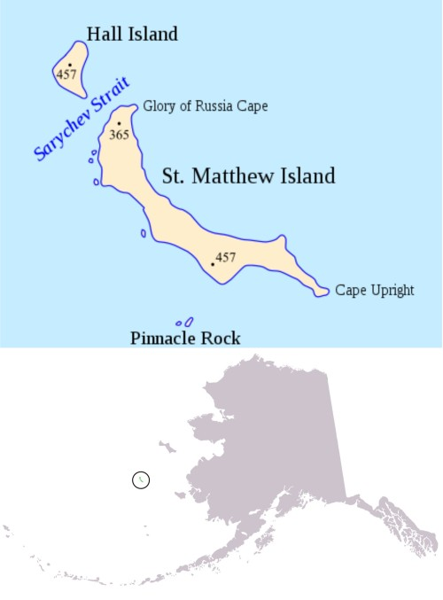 "Figure 1. St. Matthew Island is in the Bering Sea off the west coast of Alaska: north of the Pribilofs and south of St. Lawrence Island, at about 60°N latitude. Compare this to the southern end of James Bay, Canada – which has a stable population of polar bears – at about 53 0N and Churchill, Manitoba – the ""polar bear capital of the world"" – at 58 046'N. Maps from Wikipedia."