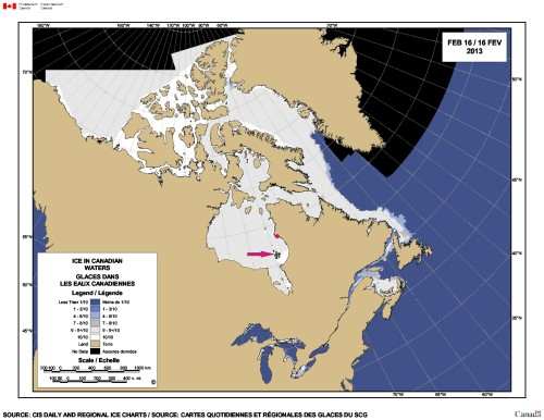 Figure 2. Location of Sanikiluaq, Quebec (arrow), one of two communities in the Belcher Islands. The location of Inukjuak, Quebec (the nearest village to the killer whales that were trapped in ice last month) is marked with a dot. See Fig. 3 below for a close-up map of the Belchers.