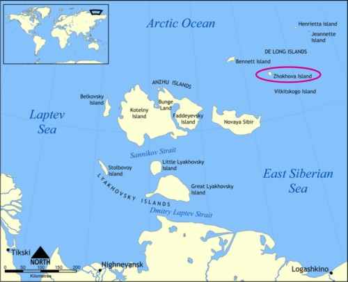 Figure 1. Map of the New Siberian Islands off Siberia, with tiny Zhokhov Island circled. Map from Wikipedia
