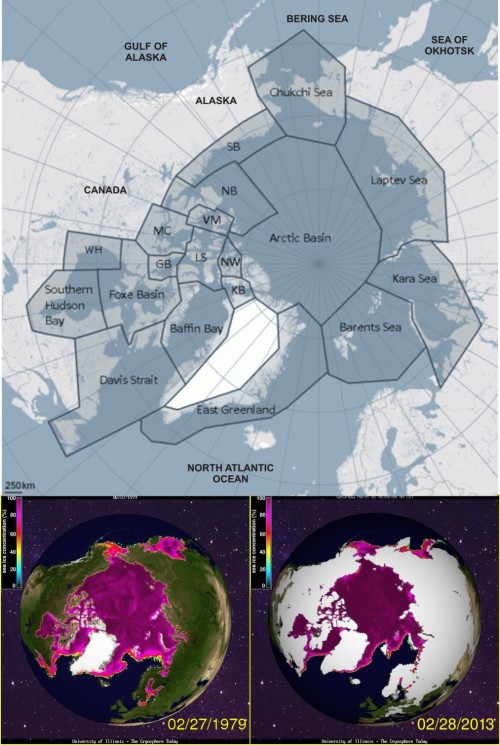 Figure 1. Polar bear distribution map (adapted from the one provided by the PBSG) compared to sea ice concentration at Feb 28 (at or near the seasonal maximum extent) 1979 and 2013. I can't see a difference – can you see a difference? The only place there is consistently sea ice in winter but not polar bears is the Sea of Okhotsk, but there is no evidence that polar bears have ever lived there despite the presence of seals. Click to enlarge