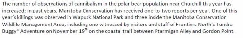 Polar Bears International Press release, November 27, 2009