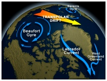 Figure 3. The Beaufort Gyre.  See it in action in Figs.4 and 5. See also the National Snow and Ice Data Center (NSIDC) description.