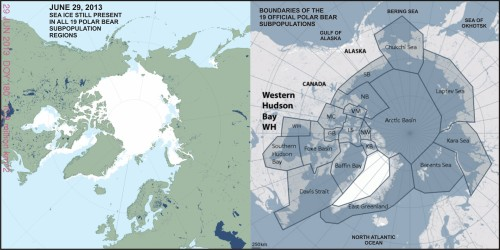 "Figure 2. Sea ice extent worldwide vs. polar bear subpopulations at June 29, 2013. On this date, there was still sea ice present in every one of the 19 subpopulation regions. Map on the left from US National Snow and Ice Data Center (NSIDC ""MASIE"") here; map on the right from the Polar Bear Specialist Group, with labels added. Click to enlarge"