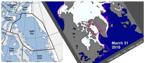 """Figure 1. The Baffin Bay subpopulation region lies north of Davis Strait (map on the left from Vongraven and Peacock 2011: Fig. 3) and management is shared between Canada (Nunavut) and Greenland. In total area, it covers 1.08 million km2 and its """"suitable ice habitat in spring"""" (according to Taylor and Lee 1995) is 413,500 km,2 somewhat less than Davis Strait. The map on the right shows the sea ice extent at the end of March 2010 (NSIDC), the winter maximum."""