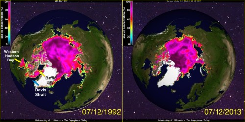 Figure 4. Sea ice concentration maps from Cryosphere Today to compare the sea ice extent and concentration values for 2013 on July 12 to that of 1992 (the latest breakup year for Western Hudson Bay in the 1991-2009 period, see Table 1 in the appendix below). Note that there was ice even in Davis Strait that year, which is rare for mid-summer.