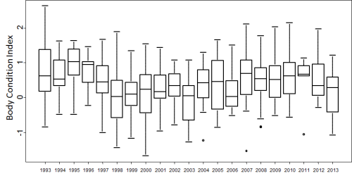 "Figure 2. Body condition of adult males in Svalbard (Barents Sea subpopulation). Original caption: ""Body condition index of adult male polar bears caught in spring (Mar-May) in the period 1993-2013"" (details below). There is no significant trend over time, according to the authors. Note that the data presented for 2013 contains no ""outliers"" (the black dots) and several years (e.g. 1998, 2000) had more bears that were in poorer condition than did 2013. The ""body condition index"" values (not defined) appear to be anomalies (i.e. ""0"" is ""normal"") – I'll correct this if I find out it means something else."