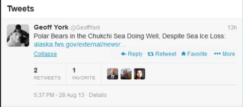 Chukchi bears press release tweet_Geoff York Aug 28 2013