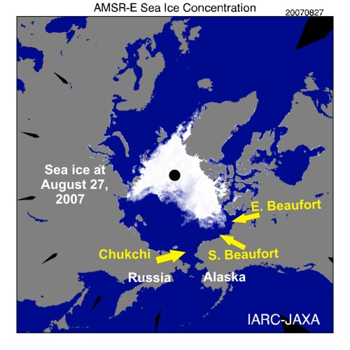 Figure 1. Sea ice extent at August 27, 2007 – the lowest extent that year (downloaded September 15, 2013 from IARC-JAXA, Arctic Sea-ice Monitor). At the time, it was the lowest extent recorded since 1979 (2012 broke that record). This (2007) was the fall before the Rode & Regehr study on Chukchi/Southern Beaufort polar bears began (2008-2011). The ice was almost as low in September 2008 and 2010, while 2009 was more like 2013.