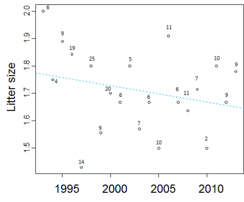 "Figure 6. Average litter size, from Aars and Andersen Original caption: ""Average litter size (cubs of the year); data from the annual capture-recapture program 1993-2013. There is a non-significant trend of decreasing litter size over time (dotted line). The number of litters are given above each annual estimate."" [my bold and underline]"
