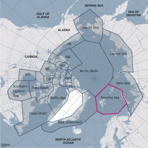 Figure 1. Polar bear subpopulations, with the Barents Sea region highlighted; map courtesy the IUCN Polar Bear Specialist Group (PBSG), extra labels added.