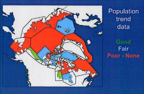 "Figure 6. Despite 40 years of research, there are only two regions that have long-term data good enough for establishing population trends. From Derocher and Stirling 2011. Slide from ""Conservation status, monitoring, and information gaps."" Invited speaker presentation to the 2011 Polar Bear Meeting in Nunavut, USA contingent. Oct 24-26, 2011."