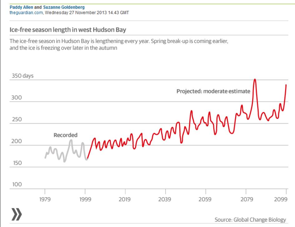 Polar bear researchers still withholding Hudson Bay data (2/2)