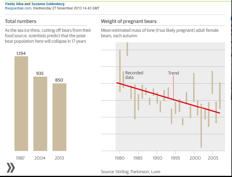 Polar bear researchers still withholding Hudson Bay data (1/2)
