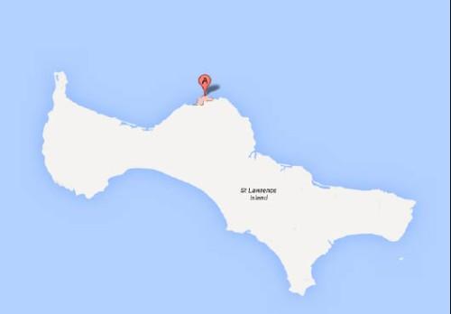 Savoonga, St. Lawrence Island, Alaska. Google Maps.