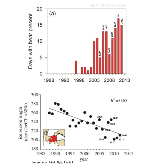 "Figure 3. Two graphs from Iverson et al. 2014. Top (their supplemental Fig. S3a): ""the number of days on which one or more polar bears was sighted at the East Bay Island,"" eider colony, from 1997-2012. That could be the same bear sighted every day over that period or several sighted on multiple days. Bottom (their Fig. 2): ""decline in annual sea ice coverage in Northern Hudson Bay Narrows"" for 1988-2012 (days with >30% ice). While there is a trend in both data sets, note the lack of a consistent correlation between length of ice season (bottom) and polar bear presence (top) year-to-year, especially for 2009 vs 2011 and 2005 vs 2001. [this is the corrected version]"