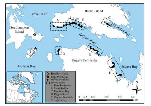 """Figure 1. From Iverson et al. 2014 (their Fig.1), """"map of the study area."""" Most of the study sites are within the Foxe Basin polar bear subpopulation region (see Fig. 2 below), although the Ungava Peninsula (E), Ungava Bay (F) and Frobisher Bay (C) sites are in the Davis Strait subpopulation."""
