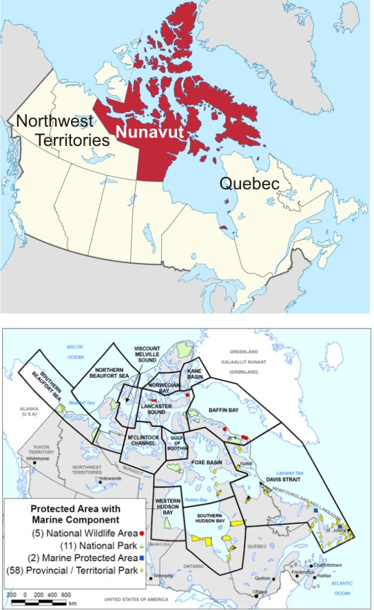 Government of Nunavut  polarbearscience