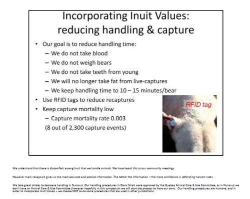 Figure 3. Lily Peacock and colleagues explain their proposed mark-recapture polar bear work at a Wildlife Research meeting in Rankin Inlet, Nunavut (Peacock et al. 2009). This is slide 17. Peacock's speakers notes, in tiny print below the slide, are transcribed below.