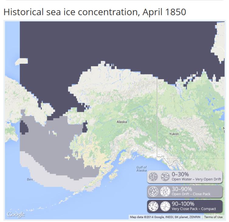 Polar Bear Habitat Ice