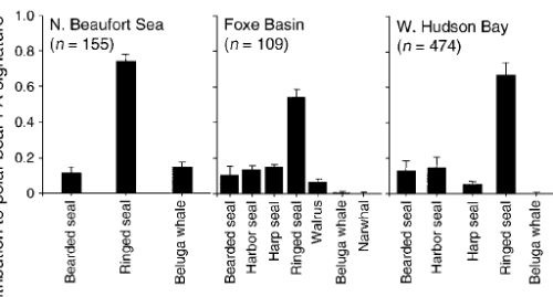 Figure 4. Diet of Northern Beaufort, Foxe Basin and Western Hudson Bay polar bears based on fatty acid analysis of blubber. From Thiemann et al. 2008, Fig. 4. The proportion of walrus, bearded and harp seal was higher for Foxe Basin bears than in many other regions. Davis Strait (not shown) had the highest consumption of harp seal in this study.
