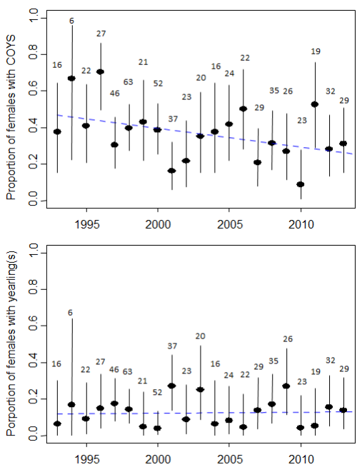 "Figure 3 From Aars and Andersen: ""Proportion of females with cubs of the year - COYs (upper panel) and yearlings (lower panel), based on data from the annual capture-recapture program 1993-2013."""