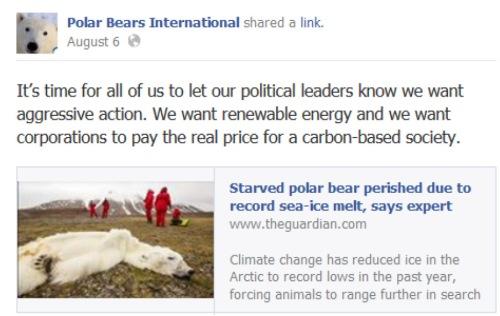 Polar Bears International Facebook_Aug 6