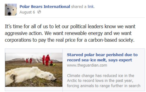 Polar Bears International Facebook_Aug 6