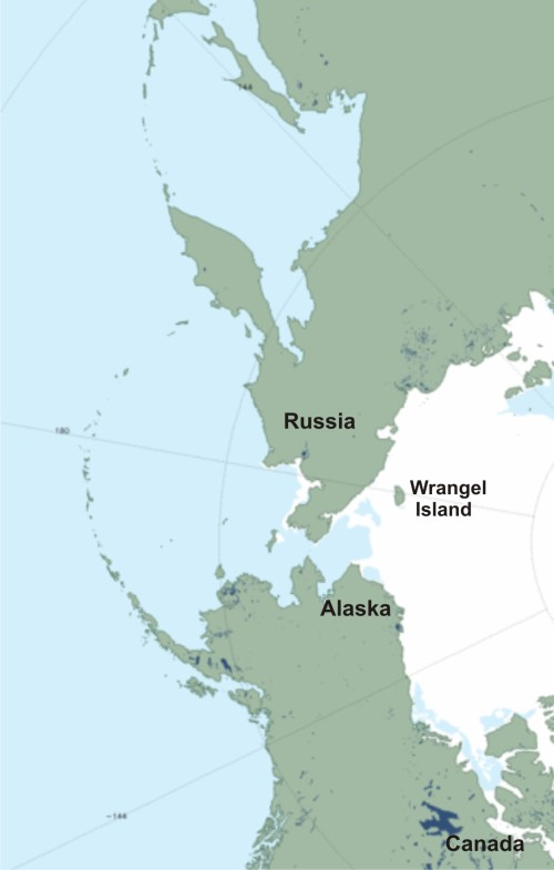 "Figure 4. NSIDC sea ice extent at June 21, 2014 (a ""MASIE"" product), close-up of the Bering, Chukchi and Beaufort Seas, labels added. Note there is still ice around Wrangel Island (an important denning area) off the Russian coast and lots of ice off the coast of Alaska. While there is no ice left in the Sea of Okhotsk, polar bears don't live there (and never have). Bears in this region generally stay on the ice as it retreats north – only a small percentage of bears spend the ice-free period on land. Click to enlarge."