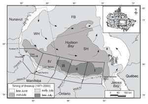 "Figure 3. The peculiar pattern of ice melt on Hudson Bay is illustrated by this figure from Stirling et al. (2004). Ice along the southwest coast of Hudson Bay (darkest gray) is the last to melt each season. As a consequence, the southwest quadrant is where most Western Hudson Bay bears come ashore. Note that the ""time of breakup"" on this map uses the old, out-of-date method (50% ice coverage)."