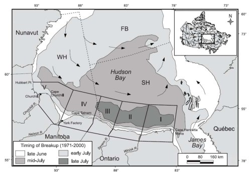 "Figure 2. The peculiar pattern of ice melt on Hudson Bay is illustrated by this figure from Stirling et al. (2004). Ice along the southwest coast of Hudson Bay (darkest gray) is the last to melt each season. As a consequence, the southwest quadrant is where most Western Hudson Bay bears come ashore. Note that the ""time of breakup"" on this map uses the old, out-of-date method (50% ice coverage)."