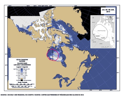 Figure 1. Sea ice coverage on Hudson Bay on 8 July, 2014 (courtesy the Canadian Ice Service) showing the Western Hudson Bay region used by Cherry and colleagues (2013) to calculate breakup dates relevant for polar bears, marked in dark pink. The map from Cherry et al. used in their paper to define the region is added as an inset, upper right. This agrees well with National Snow and Ice Data Center maps for July 7 (Fig. 3 below), which uses the same kind of data as Cherry et al. The ice looks to be approaching the 30% coverage level within the marked area.