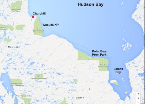 Figure 5. Wapusk National Park is just south of Churchill, while Polar Bear Provincial Park is much further east, where the very last ice of the season ends up and therefore, where most of the bears come ashore. Courtesy Google maps, labels added.