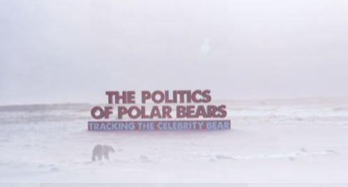 Politics of polar bears title