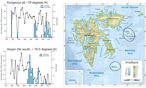 "Figure 2. Fall sea ice cover graphs from Aars and Andersen, map from Wikipedia. Original caption: ""the figure shows the number of days where there were more than 60% sea ice cover around the island of Kongsøya [upper graph, and Hopen, lower graph] in the period Oct 1 - Dec 31 (left axis), and the number of dens the same winter (right axis). Dens are counted either by surveys on the ground (several weeks), or from helicopter (1-2 days). The coverage in the study area has varied between years. Years without surveys have no bar."" [my bold] Click to enlarge."