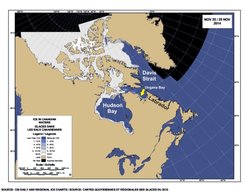 Davis Strait Hudson Bay freeze-up at Nov 25 2014_PolarBearScience