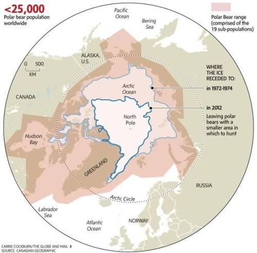 Sea ice graphic, Globe and Mail 23 November 2014