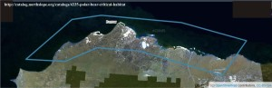 Critical habitat Polar Bears US_NorthSlopeOrg map_labeled_PolarBearScience