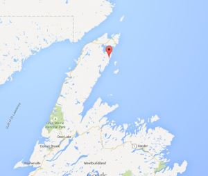 Croque_newfoundland_PB sighting location May 7 2015