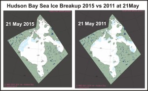 Figure 4. From NSIDC MAISE, 2011 (right) had almost exactly the same amount of ice cover at 21 May as did 2015 (left), according to CIS chart, Fig. 6. (below). However, the ice was distributed differently. There was an extensive wide shore lead along eastern Hudson Bay in 2011 that extended into James Bay – we are seeing none of that open water this year at this date (see also Fig.1). Despite the large patch of open water in NW Hudson Bay, there is also very little open water in Hudson Strait this year – much less than there was in 2011, which was an earlier breakup year.