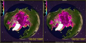 Figure 4. Sea ice concentration at 2 June 1990 (left) and 1991 (right). 2 June was the official breakup date for WHB. Click to enlarge.