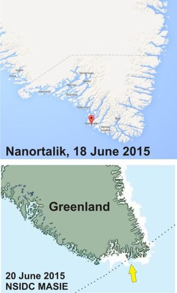 Greenland S_Nanortalik_pb location w sea ice 20 June_PolarBearScience