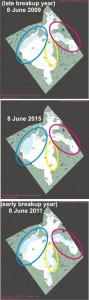 Figure 4.  Sea ice coverage at 8 June 2015 (centre) to the same date in 2009 (an late breakup year, July 2, top) and 2011 (an early breakup year, June 5, below). Compare amount of ice in each of the three coloured areas. Note that in 2015 there is less open water in Hudson Strait (magenta) and eastern Hudson Bay (yellow) than there was in 2009 – despite the larger area of open water in NW Hudson Bay this year. Click to enlarge.