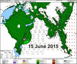 Figure 2c. Hudson Bay sea ice age for the week of 15 June. CIS. Click to enlarge.