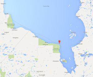 Cape Henrietta Maria ON_SH bears ashore